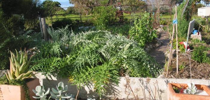 Irinas Garten in Australien