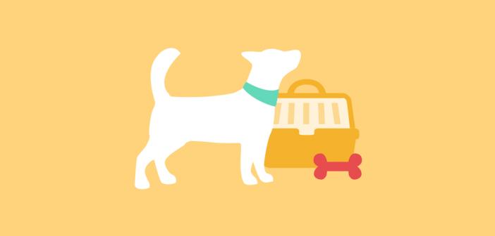 Wie kann ich meinen Hund nach Australien mitnehmen?