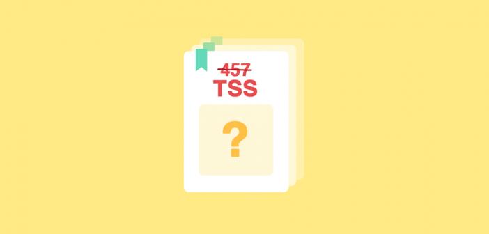 Das TSS Visum – Beantragung, Ablauf, nötige Dokumente